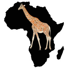 Nel profondo dell'Africa Nera
