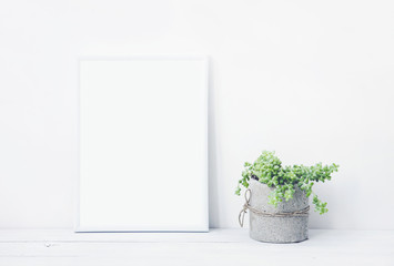 white frame with place for text  with succulent