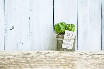 Happy Valentine's Day. Cactus in pot