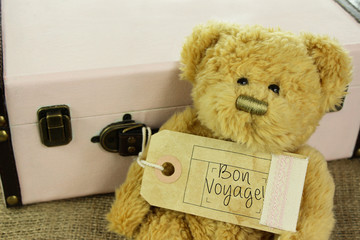 Teddy Bear with vintage suitcase and bon voyage luggage tag