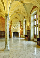 France, the old council room in the Amboise castle