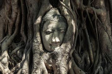 Buddha Head in Tree Roots, Thailand