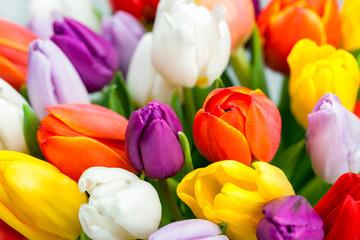 Bunte Tulpen als Blumenstrauß