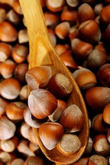 hazelnuts in a wooden bowl