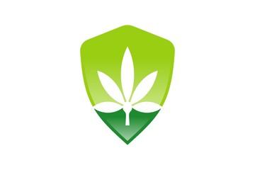 Green Shield ver. 2