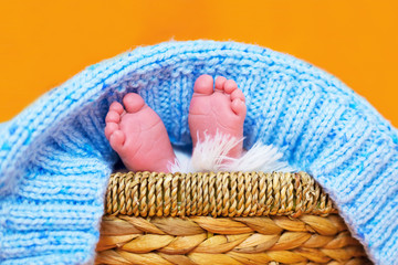 Small feet of newborn baby boy