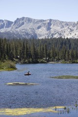 Landscape of Mammoth Lake, California