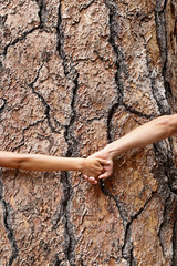 Nature Earth lovers - tree huggers holding hands