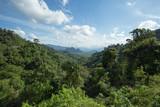 Lush green Jungle landscape of Khao Sok National Park, Thailand