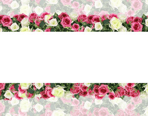 beautiful blossom flower pattern background illustration
