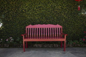 Red chair in front of green leaf climber wall in the garden
