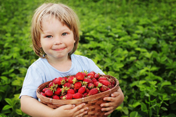 boy with basket of strawberry