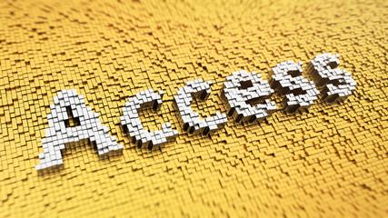 Pixelated Access