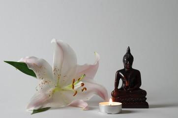Lilie mit Budha