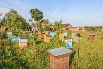 Farm bee-garden with multicolor beehouses