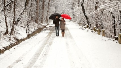 Couple walking in park with umbrellas during winter