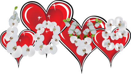 red hearts and orchid flowers isolated on white