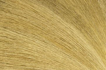 detail broom wood background