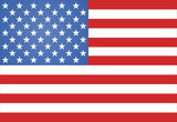 American Flag Vector illustration - 76886015