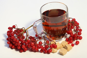 Fruit tea with a guelder-rose and sugar