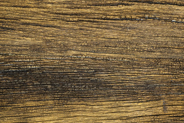 Texture of old wood with grain
