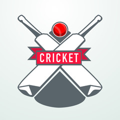 Cricket sports concept with bats and red ball.