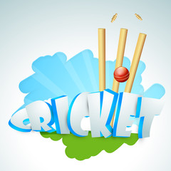 3D text Cricket with red ball and wicket stumps.