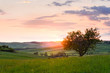 sunset Tuscany - 76889210