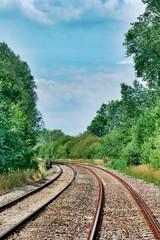 Railway Tracks Curving Through Green Shrubs and Trees