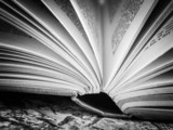 Fototapety black and white  Open book