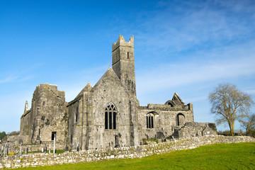 Quinn abbey ruins