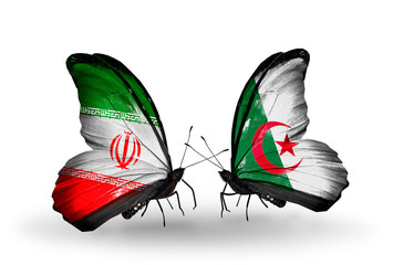 Two butterflies with flags Iran and Algeria