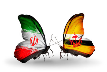 Two butterflies with flags Iran and Brunei