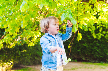 Adorable toddler boy playing with leaves in a park
