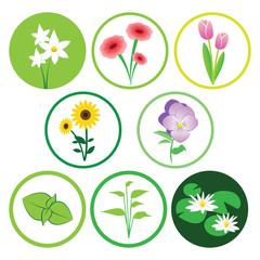 Nature flower icon set