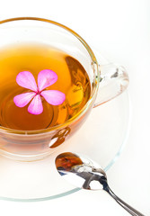 Glass Cup Tea with Mint Leaf and pink flower, Isolated on White