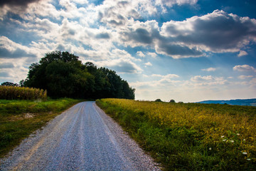 Cloudy sky over a dirt road and farm fields in rural York County