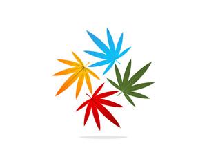 Marijuana Cannabis Hemp Plant