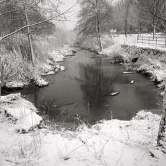 Winter am Bachlauf