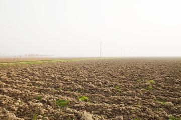 Agriculture bare, Delta de Po, Italy