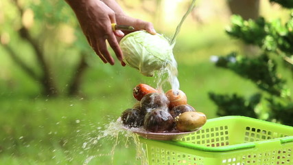 man washed cabbage and pour water on different vegetables