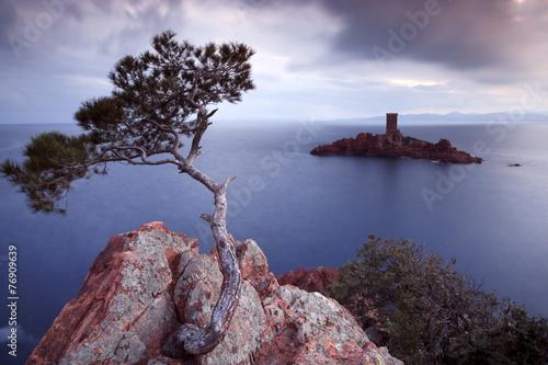 Papiers peints Ile Pine tree and castle island