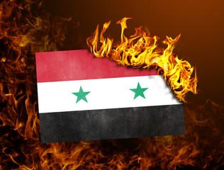 Flag burning - Syria
