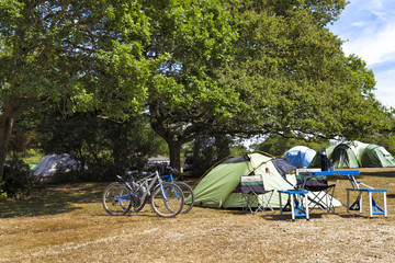 Family tents in camping site under the oak trees