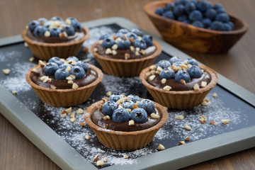 chocolate mousse with fresh blueberries and nuts in tartlets
