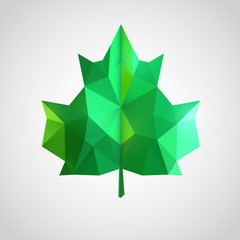 Low poly green leaf