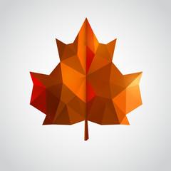 Low poly orange leaf.
