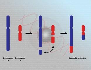 Chromosomal translocation