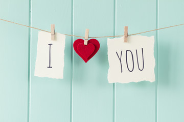 """I love you"" hanging on a rope with clothespins. Vintage Style."