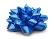 Blue Present Bow - 76922034